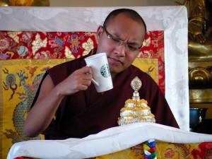 starbucks buddha